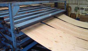 Pembuatan kayu lapis